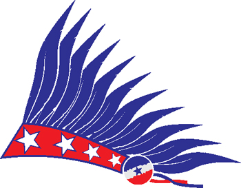 stars and stripes decal 80