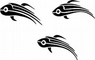 Tribal_Fish_Animals_Skulls_23
