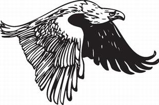 Eagle_1