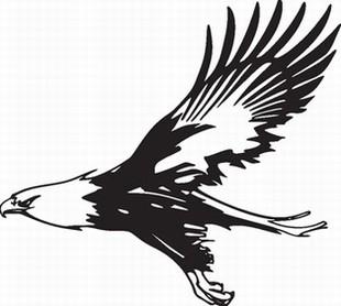 Eagle_12