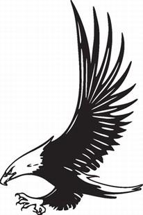 Eagle_17