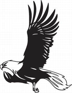 Eagle_19