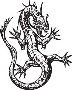 Dragon decal 70